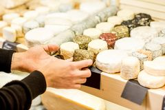 Cheese seller at the shop. Cheese seller putting goods on the shelves at the cheese store stock photo