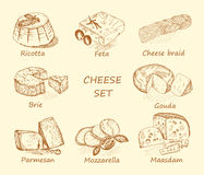 Cheese set brown Royalty Free Stock Image