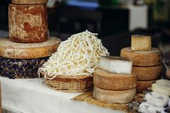 Cheese set on stand at street food festival in city. Different types of cheese, brie, blue,gorgonzola,goat, parmezan on wooden. Table.Street food festival stock image