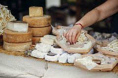 Cheese set on stand at street food festival in city. Different types of cheese, brie, blue,gorgonzola,goat, parmezan on wooden. Table.Street food festival stock photo