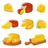 Cheese set. Vector. Illustration. See my other works in portfolio Royalty Free Stock Photo