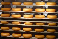 Cheese on shelves Royalty Free Stock Images