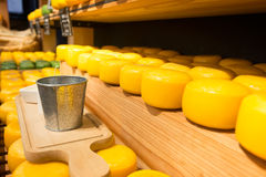 Cheese on shelves. Cheese wheels on wooden shelves. Platter for cheese degustation. Different sort of farm made cheese Royalty Free Stock Images