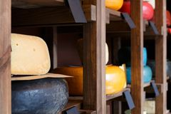 Cheese shop shelves closeup, large assortment. Cheese shop shelves closeup. Assortment of cheese wheels in store. Focus on parmesan piece royalty free stock photography