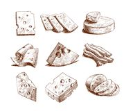 Cheese sketch collection Stock Image