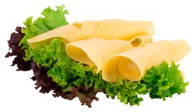 Cheese slices and fresh green lettuce isolated on a white backgr. Ound royalty free stock images