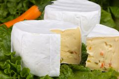 Cheese with slices of pepper on lettuce background Stock Photos