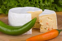 Cheese with slices of pepper on lettuce background Stock Photo