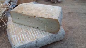 Taleggio cheese. Soft cheese for sale at a market Italian washed rind cheese stock photo