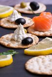 Cheese soft with spices on a tender cracker. Canape on a gray tray. Selective focus.  Stock Images