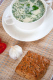 Cheese soup with dill and bread Royalty Free Stock Photography