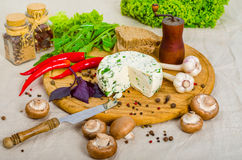 Cheese and spices on the wooden board. Cheese, mushroom and spices on the wooden board with mill Royalty Free Stock Images