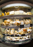 Cheese stand Stock Image