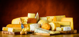 Cheese in Still Life Royalty Free Stock Photography