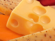 Cheese still life Stock Image
