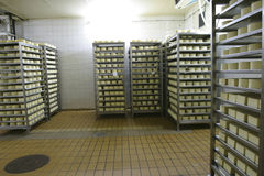 Cheese storage in dairy Stock Photo