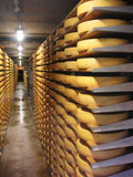 Cheese store. Rows of cheese stored in a cheese factory, Gruyere, Switzerland Stock Photos