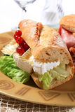 Cheese sub sandwich. Sub sandwich with white rind cheese and lettuce royalty free stock image