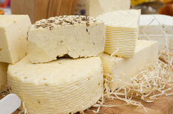 Cheese on the table Royalty Free Stock Photography