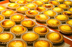 Cheese Tarts Stock Images