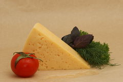 Cheese, tomato and herbs on pack paper. Cheese, tomato and herbs on wet pack paper, ingredients for cooking stock images