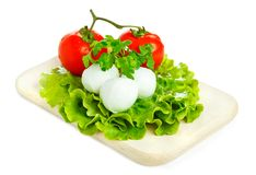 Cheese with tomato and salad. Mozarella with tomato on  wood board Stock Images
