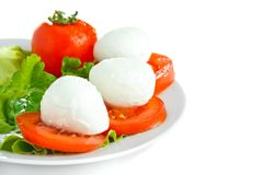 Cheese with tomato and salad. Mozarella with tomato and salad on white plate Royalty Free Stock Photography