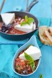 Cheese with tomato sause. Royalty Free Stock Photos