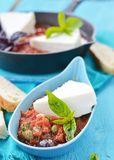 Cheese with tomato sause. Stock Photos