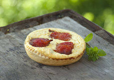 Cheese and tomato tart Stock Image