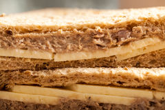 Cheese Tuna Sandwich close up. Cheese and Tuna Sandwich by a window close up. Lunch at break Royalty Free Stock Image
