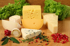 Cheese types Stock Photos
