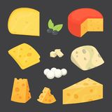 Cheese types . cartoon style vector illustration icons. Cheese types . cartoon style vector illustration icons Stock Image