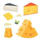 Cheese types in cartoon style vector illustration icons. Cheese types . cartoon style vector illustration icons Stock Images