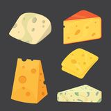 Cheese types . cartoon style vector illustration icons. Cheese types . cartoon style vector illustration icons Royalty Free Stock Photo
