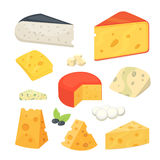Cheese types . Modern flat style realistic vector illustration icons. Isolated parmesan or cheddar fresh on white Stock Images