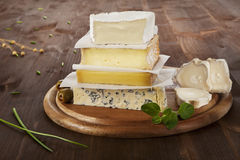 Cheese variation. Stock Photos