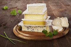 Cheese variation. Royalty Free Stock Image