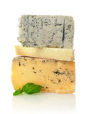 Cheese variation Stock Images