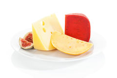 Cheese variaton on white plate. Stock Image