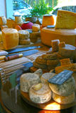 Cheese. Variety of artisan cheeses in São Paulo Stock Images