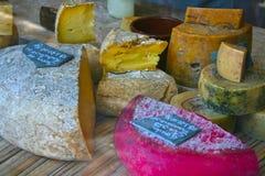 Cheese. Variety of artisan cheeses in São Paulo Stock Image