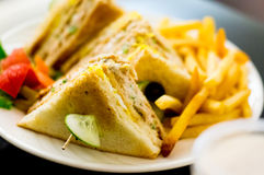 Cheese, vegetable sandwich healthy food Royalty Free Stock Images