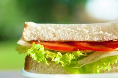 cheese and veggies sandwich - healthy snacks and homemade food styled concept royalty free stock images