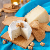 Cheese and walnut Stock Photography