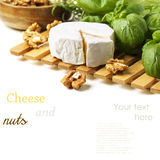 Cheese and walnuts with basil Stock Images