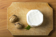 Cheese and walnuts Royalty Free Stock Image