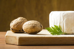 Cheese and walnuts Royalty Free Stock Photos