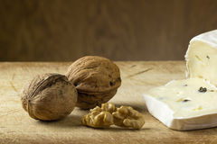 Cheese and walnuts Stock Photography