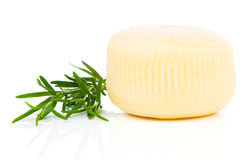 Cheese wheel Stock Photography